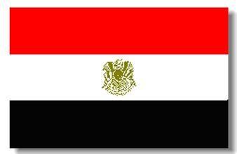 埃及COC/GOEIC注册
