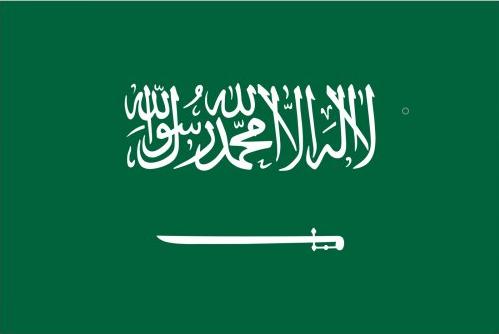 沙特水效认证